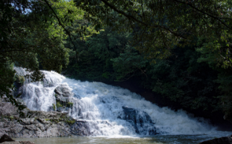 三州瓦イメージ画像